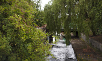 A photograph of a river with large overhanging trees.